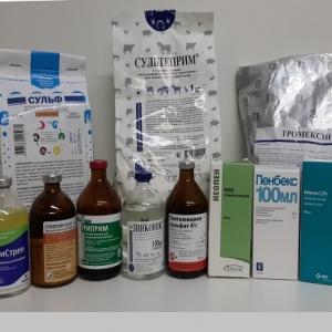 Антибиотики, сульфаниламиды и бронхолитики