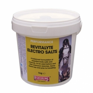 Элетролит с пробиотиками Ревиталайт (Revitalyte Electro Salts) 400 г