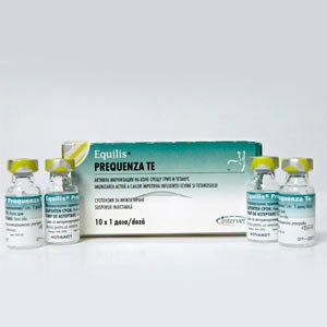Вакцина Эквилис Преквенза Те (Equilis Prequenza Te) против гриппа и столбняка лошадей
