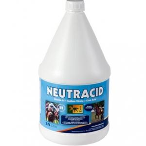 Нейтрацид р-р (Neutracid) 3,75 л пл. канистра