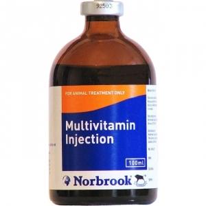 Мультивитамин (Multivitamin),100мл