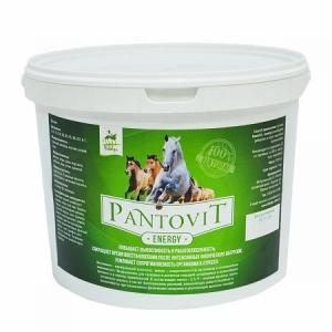 ПантоВит Энержи (PantoVit Energy) 5кг