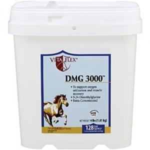 ДМГ (DMG) 3000, 1,81кг