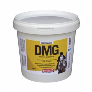 ДМГ (DMG - Dimethyl Glycine Pure) 1 кг