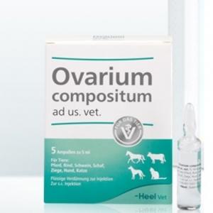Овариум композитум (Ovarium compositum), 1амп.х 5 мл