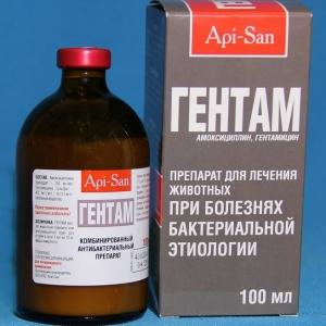 Гентам (Gentam) 100мл