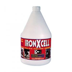 АйронЭксель (IronXcell)  3,75 л