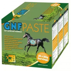ГНФ паста (GNF Paste) упаковка 28 шприцов
