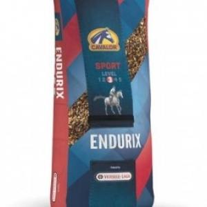Эндурикс (Endurix) 20кг