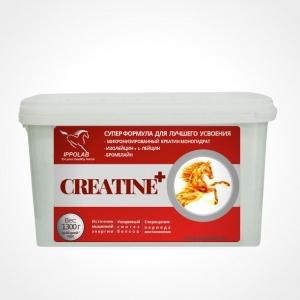 Креатин + (IPPOPERFECT CREATINE +), 1300г