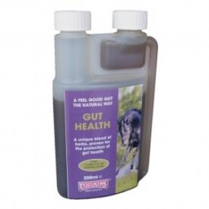 Здоровый кишечник (Gut Health) 250мл