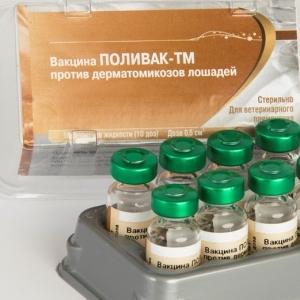 Вакцина Поливак-ТМ против дерматомикозов лошадей инактивированная