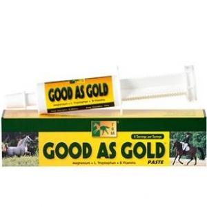 Гуд Ас Голд паста ( Good As Gold Paste)  70г