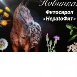 Сироп HepatoФит (для лечения печени), 1л